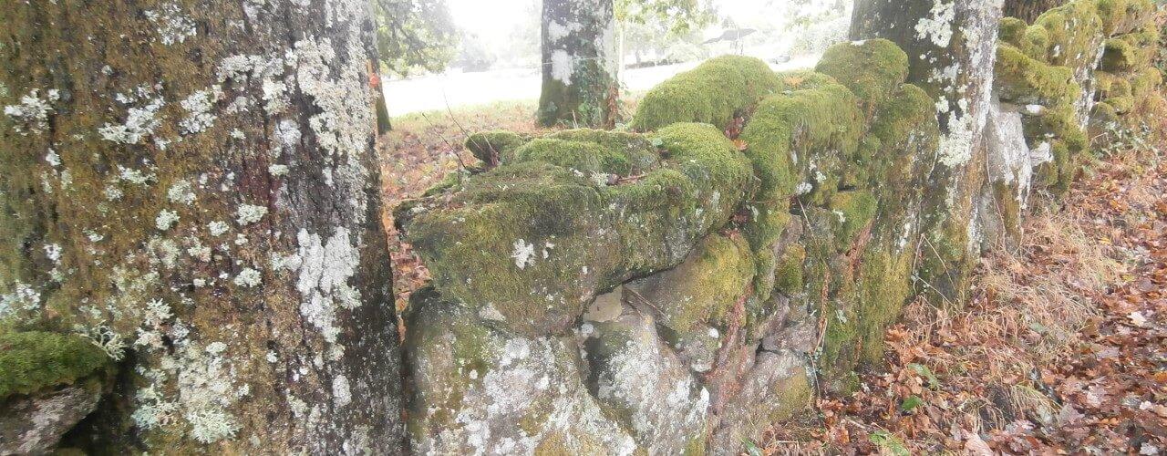 piedra.seca